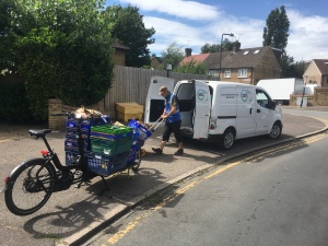 organiclea delivery